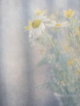 Still life of wild flowers in glass vase by Lars Hallstrom