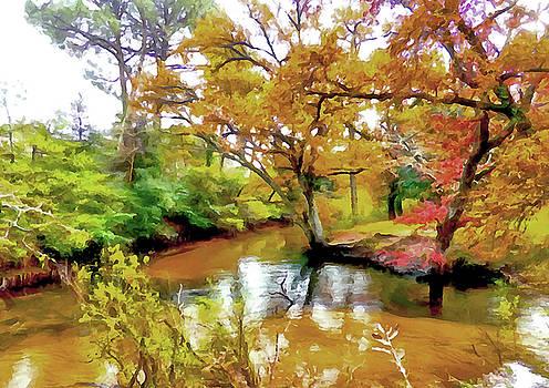 Still Waters by Bishopston Fine Art