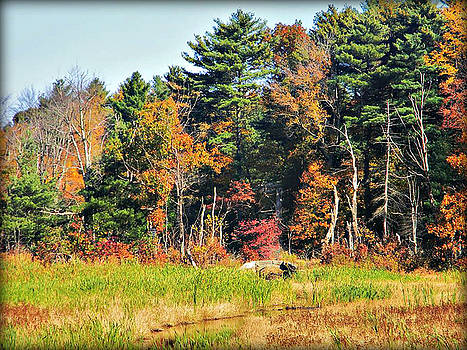 Stone Bridge in Fall by Diane Valliere