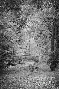 Stone Bridge In The Woods by Tamara Becker