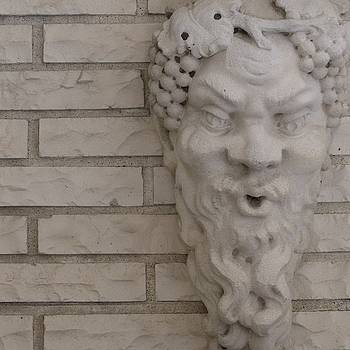 Stone Faced by Anna Villarreal Garbis