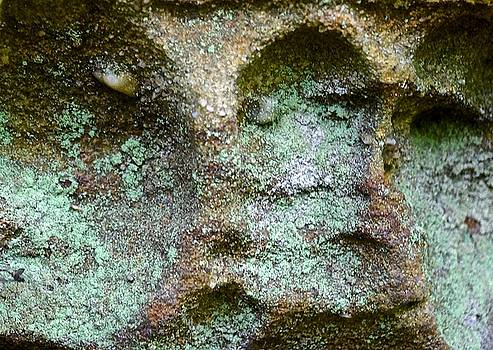 Stone Faces by Wendell Lowe