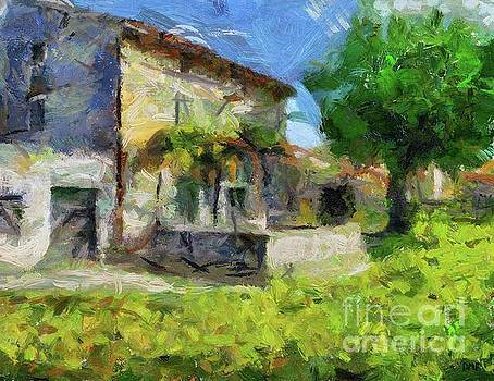 Stone House With  Old Mulberry by Dragica Micki Fortuna