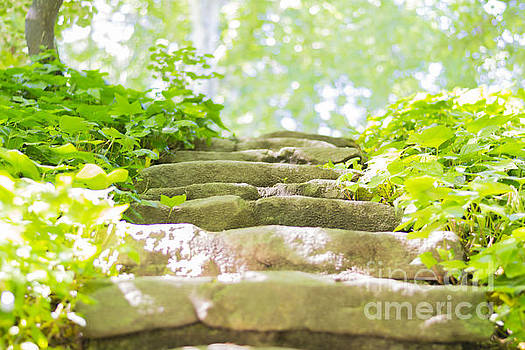 Stone stairs by Stefano Piccini