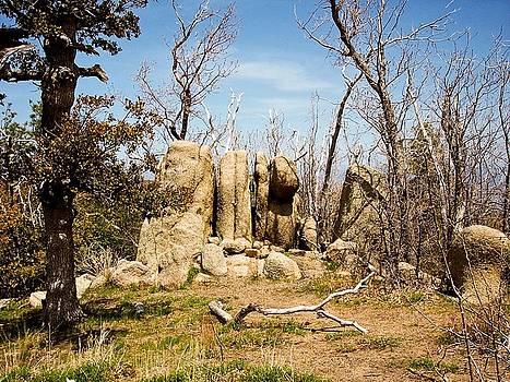 Stonehenge Arizona by J Ringo