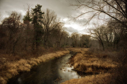Stony Brook in Early December by Lee Fortier