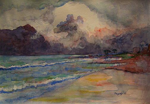 Storm Beach by Ray Agius