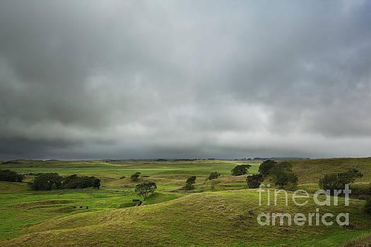 Charmian Vistaunet - Storm Clouds over Waimea Countryside