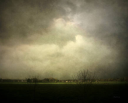 Storm in the Area by Cynthia Lassiter