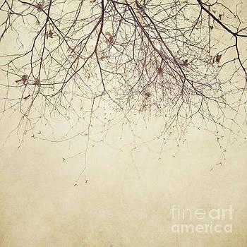 Stormbound by Priska Wettstein