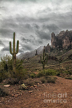 Stormy day at the Superstitions by Ruth Jolly
