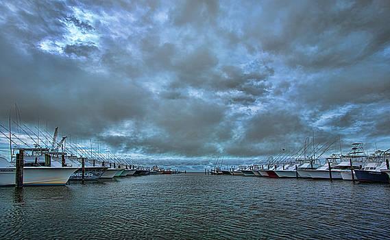 Stormy Fleet by Greg Mills