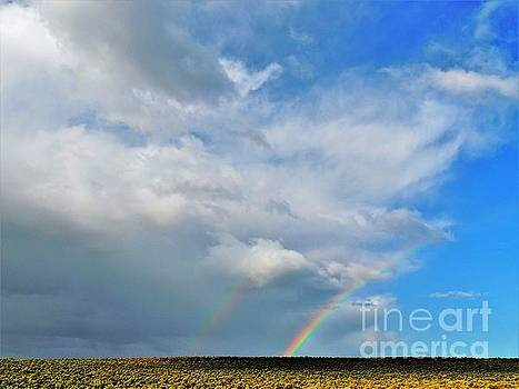 Thunder Storm Rainbow by Michele Penner