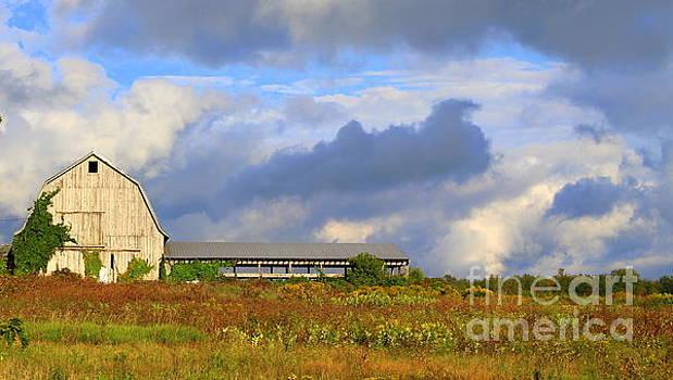Stormy Sunday by Debra Kaye McKrill