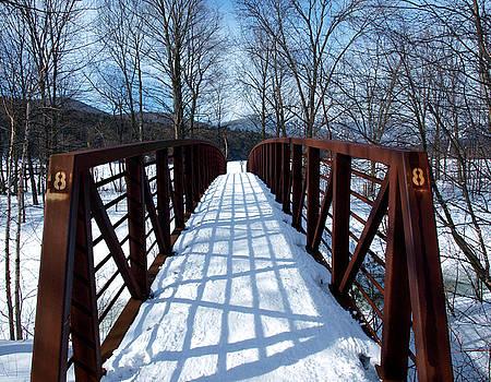 Stowe Vermont Bridge 8 by Dave Olsen
