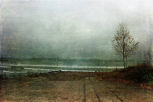 Straight Into the Ocean by Randi Grace Nilsberg