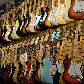 Stratocaster Collection by Dany Lison