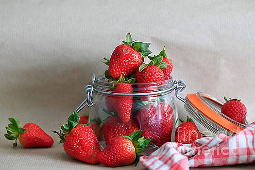 Strawberry Delight. by Tracy  Hall