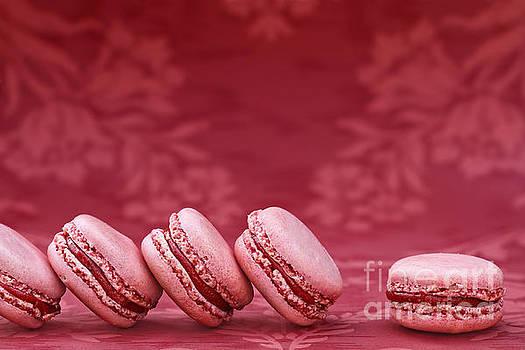 Strawberry Macarons by Stephanie Frey