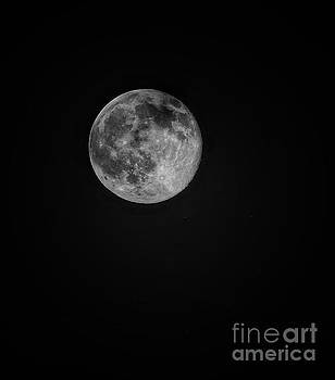 Strawberry Moon 2016 by Paul Wilford