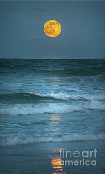 Strawberry Moon by Linda Olsen