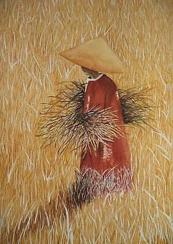 Strawman by Constance Larimer