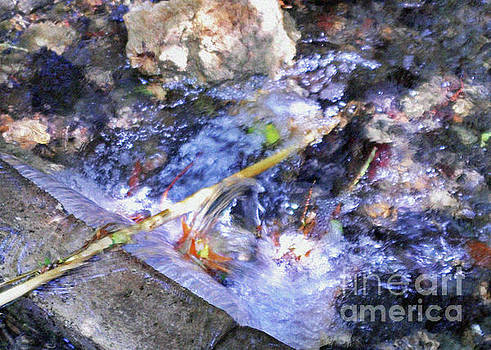 Streams Of Color  by Lydia Holly
