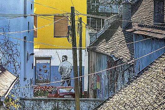 Street art in Novi Sad - Angler by Jivko Nakev