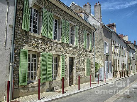 Street in Burgundy town by Patricia Hofmeester