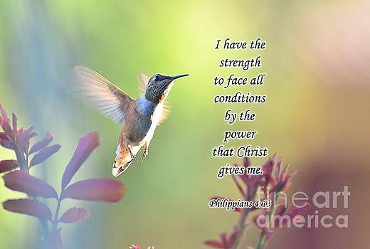 Strength Through Christ by Debby Pueschel
