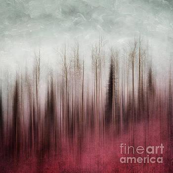Stripped to the Soul by Priska Wettstein