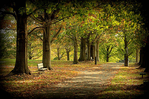 Stroll in park by Doug Hoover