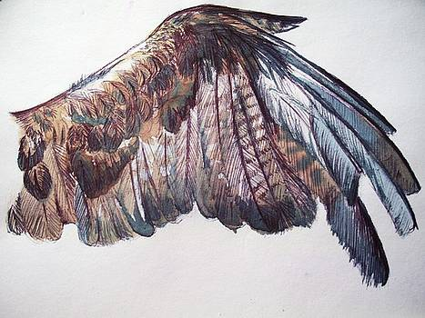 Study Of Flight by Julianna Wells