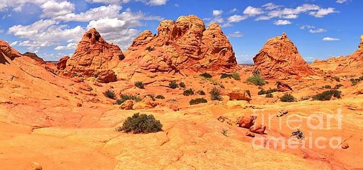 Adam Jewell - Stunning Arizona Landscape Panorama