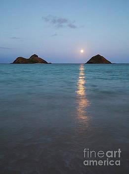 Stunning Hawaii Moonrise by Charmian Vistaunet