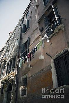 Svetlana Sewell - Suburban Venice