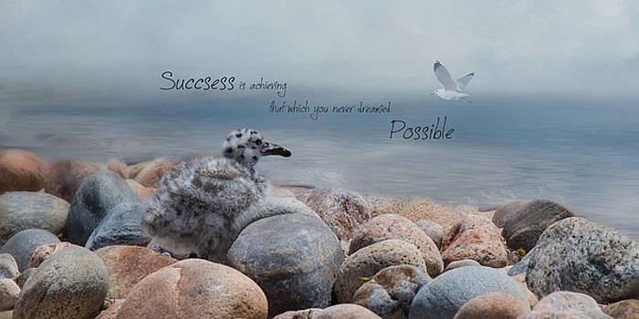 Success by Robin-lee Vieira