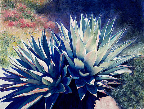 Succulents by Karla Horst