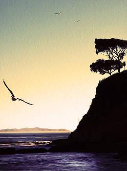 Suenos Cabrillo Beach. San Pedro, California.  by Joe Schofield
