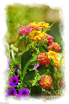 Sumer Lantana Garden by Debbie Portwood