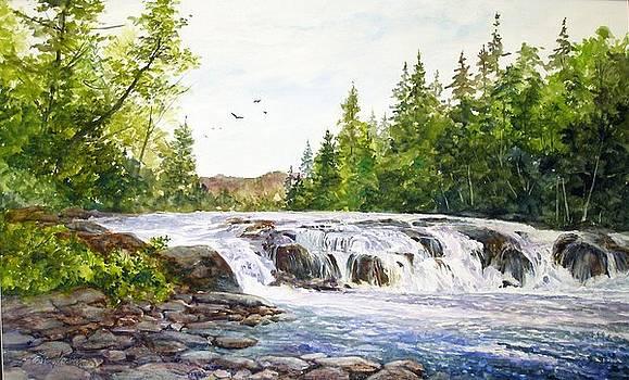 Summer at Buttermilk Falls by Lois Mountz