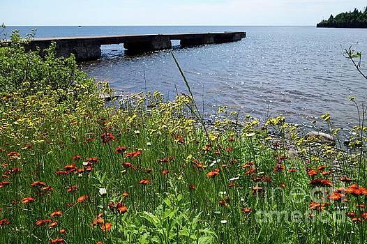 Summer at the Dock by Sandra Updyke