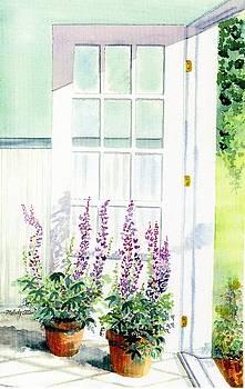 Summer Door  by Melody Allen