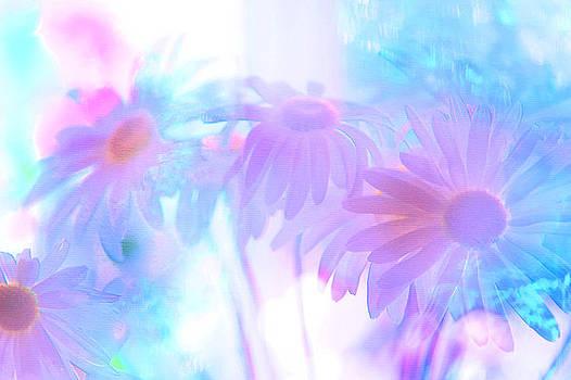 Jenny Rainbow - Summer Dreams