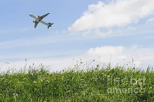 Patricia Hofmeester - Summer flying
