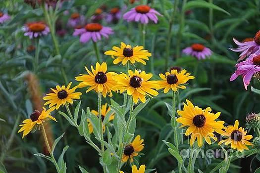 Summer Garden by Yumi Johnson