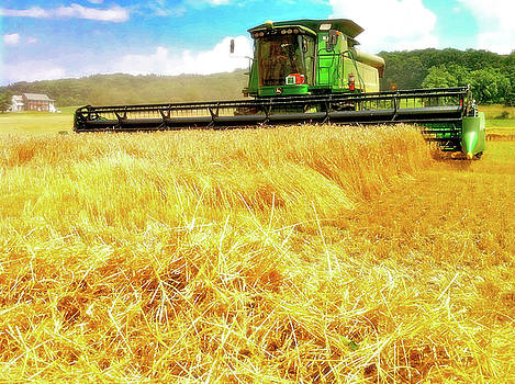 Summer Harvest by Kevyn Bashore