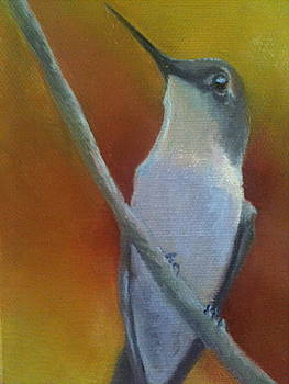 Summer Hummer by Cynthia Vowell