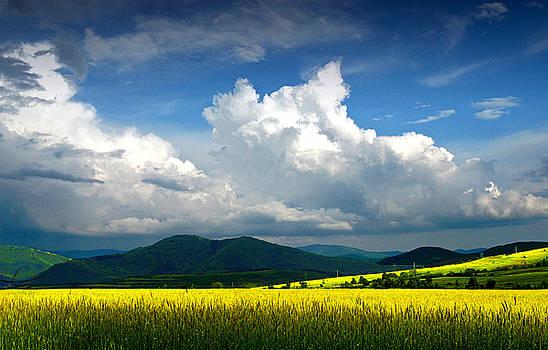 Summer is coming soon by Stoyanka Ivanova