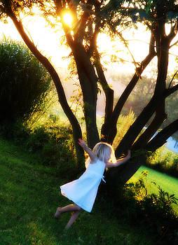 Summer Joy by Cheryl Helms